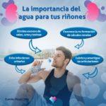 La importancia del agua en tus riñones
